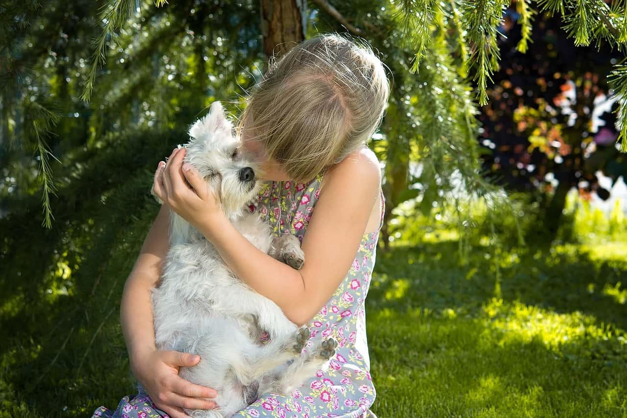 Hält uns ein Hund gesund?