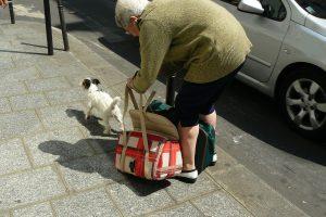 Ein Tier hält Senioren auf Trab