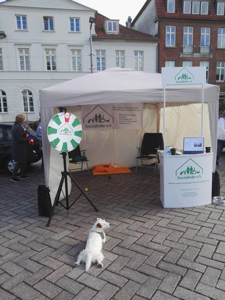 Street-Team Einsatz beim Tierschutzfestival Ratzeburg