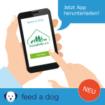feed a dog Sozialfelle gross
